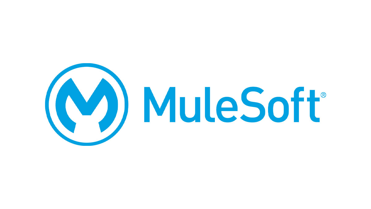 Mulesoft expert implementation